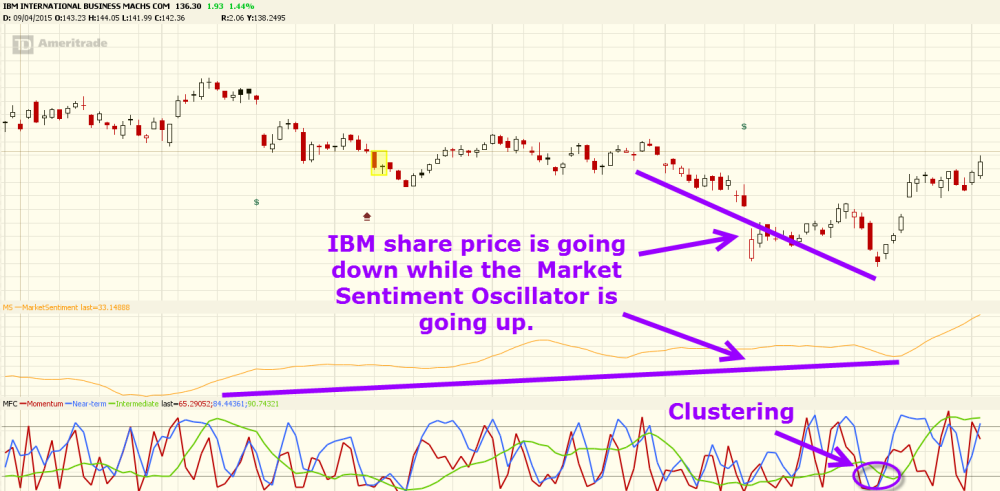 IBM Market Sentiment and Forecast Oscillator